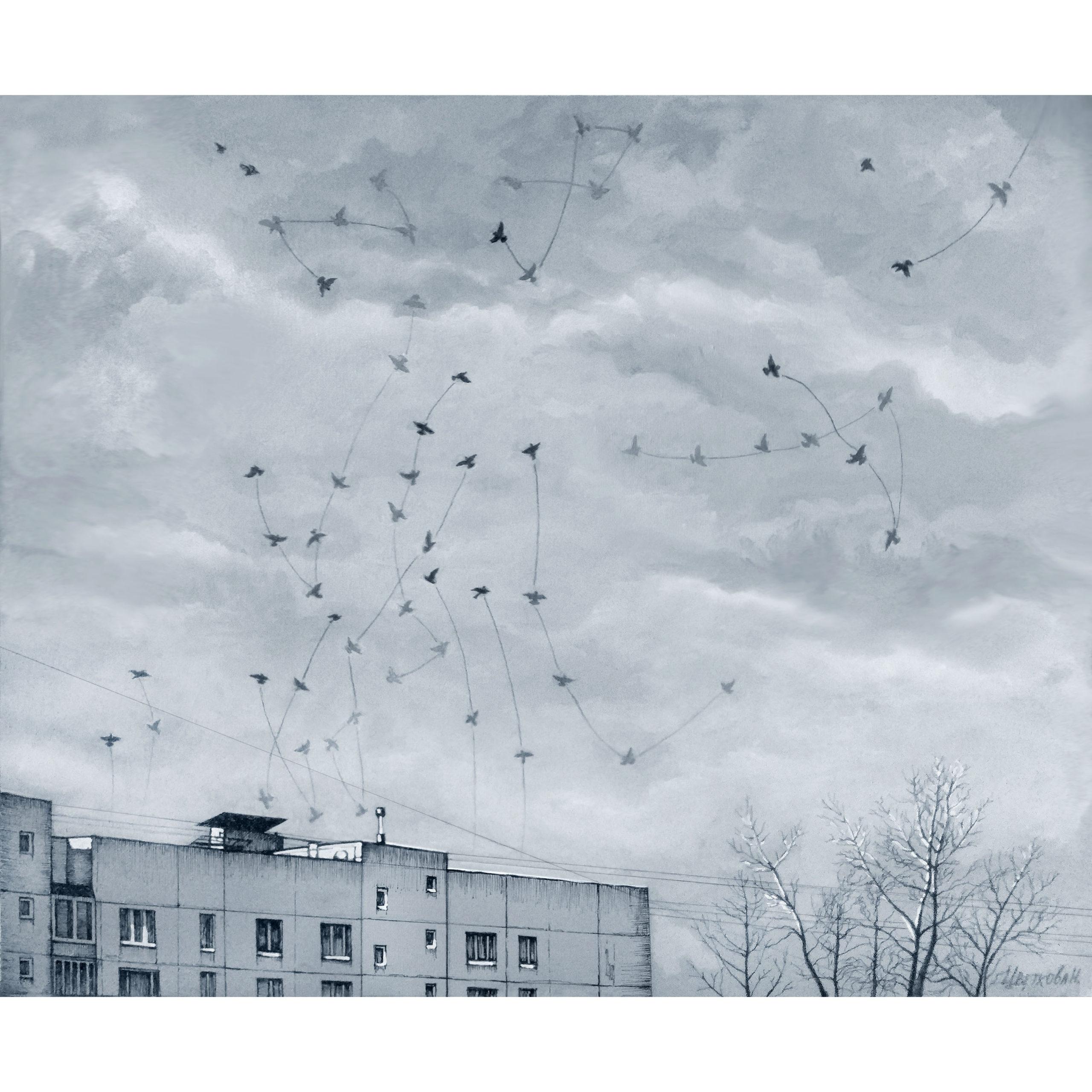 небесные пути птицы